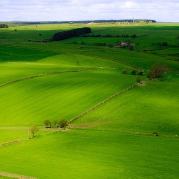 Top Picnic Spots in Yorkshire