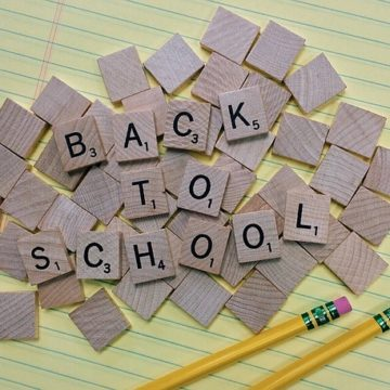 Back to School Packed Lunch Ideas
